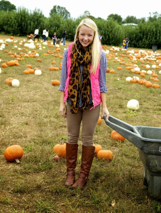 Patterns & Pumpkins