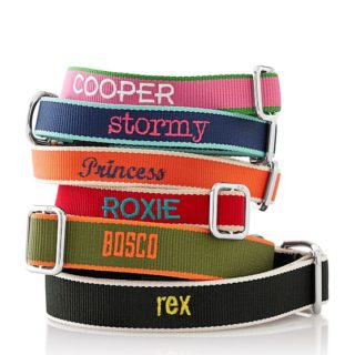 Needlepoint Dog Collar holiday gift guide