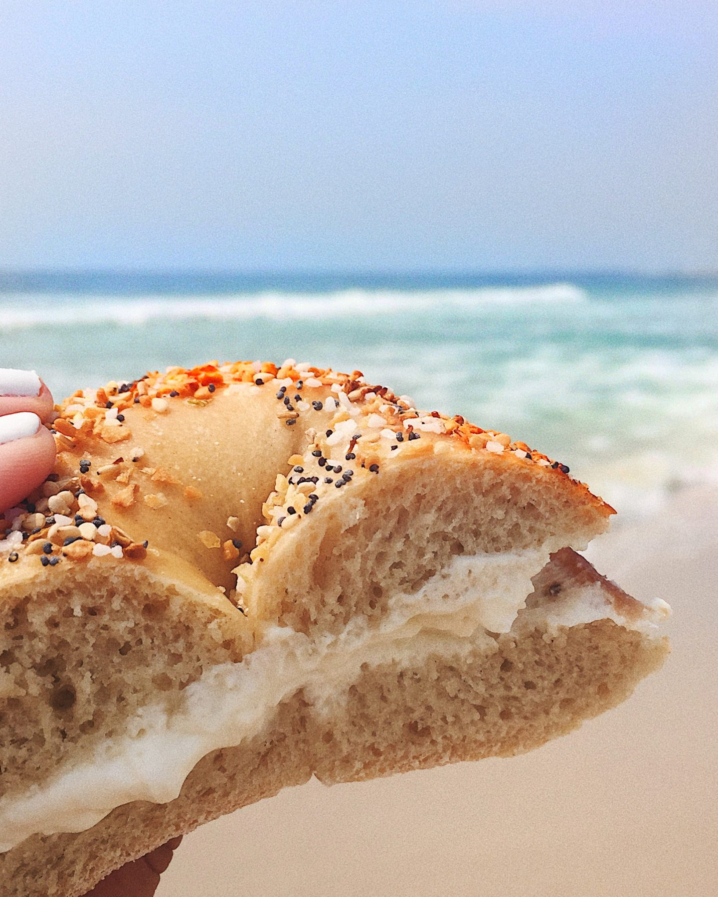 Long Beach Island travel guide Bagel Shack best bagel on the Jersey shore