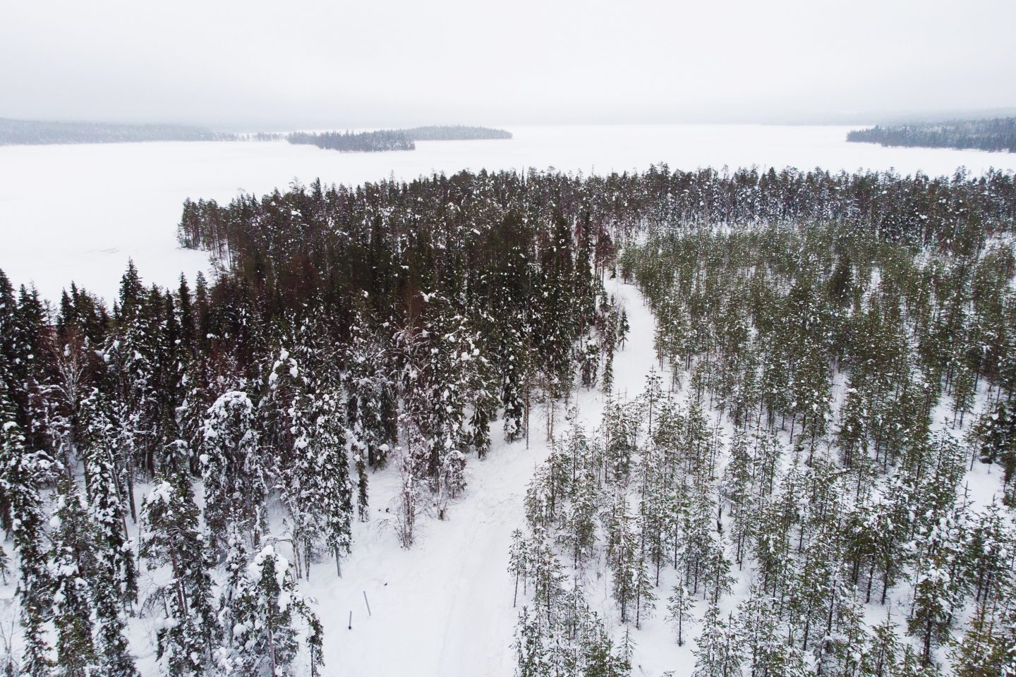 Travel guide and travel diary to Lapland, Finland and Rovaniemi, Finland with Finnair