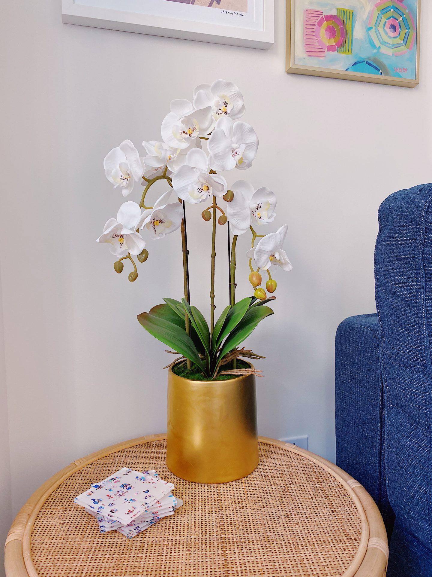 Amazon faux orchid